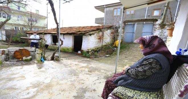 Kırsaldaki çınarlar 632 kez hizmet aldı
