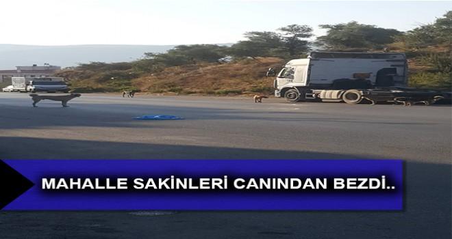 MAHALLE SAKİNLERİ CANINDAN BEZDİ..