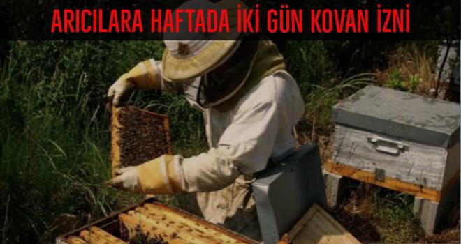 Arıcılara haftada iki gün kovan izni