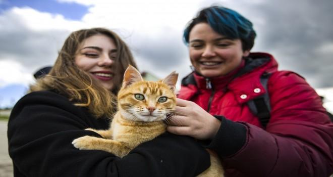 Veteriner adayları hayvan bakım evini ziyaret etti
