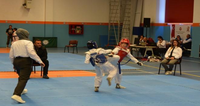Büyükşehir'in 23 Nisan kutlamaları Taekwondo turnuvasıyla başladı